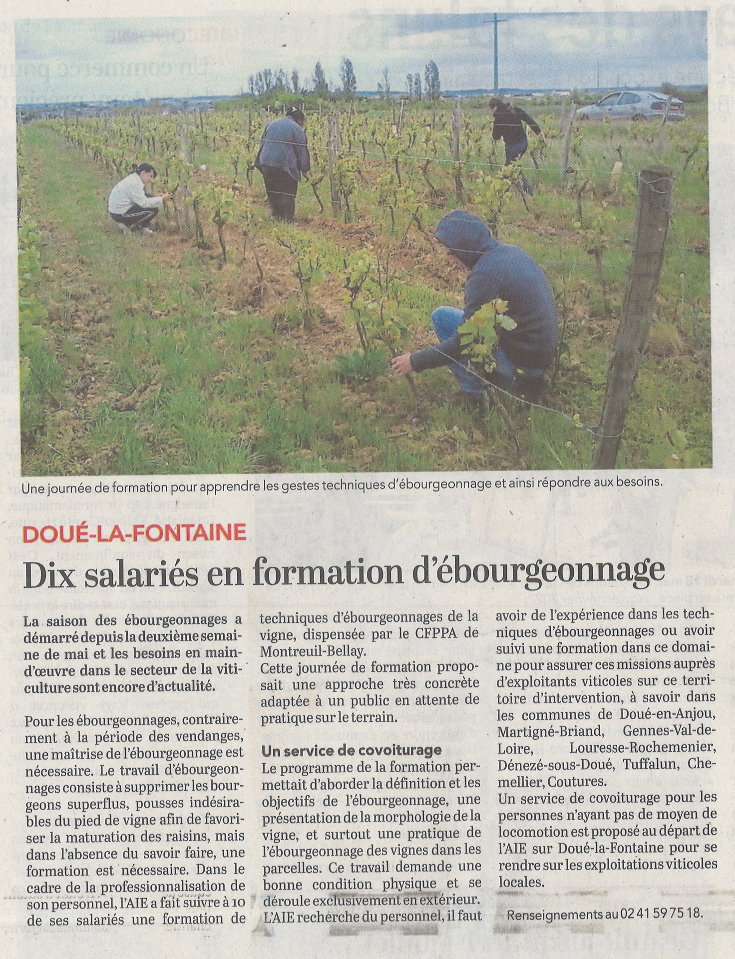 Article co 23052021 formation ebourgeonnages