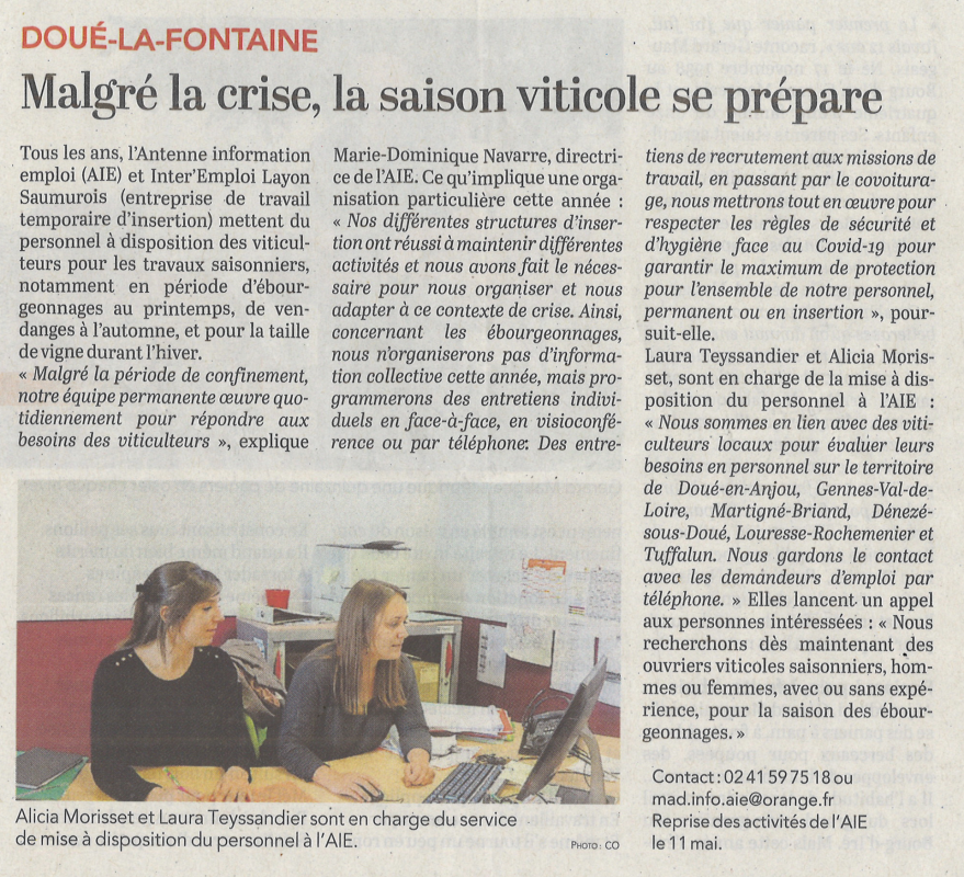 Article co ebourgeonnages 0305202