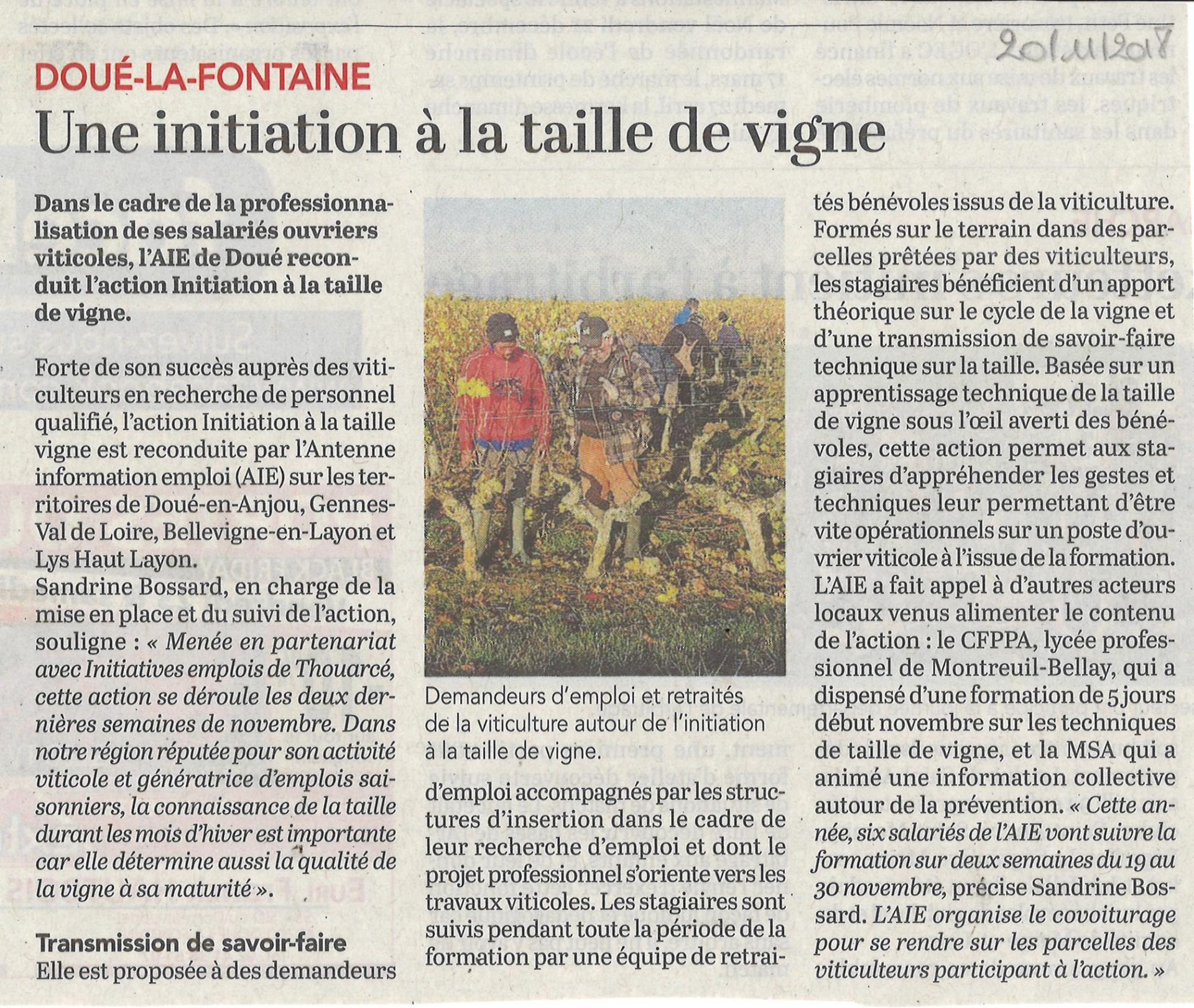 Article initiation taille de vigne