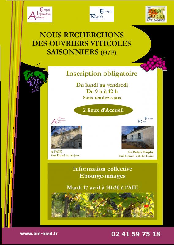 Recherchons ouvriers viticoles 2
